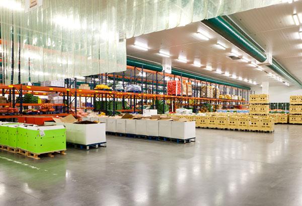 Distribution & Logistics Industry