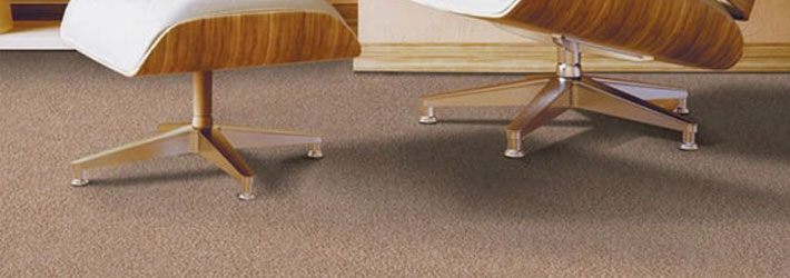 How to professionally care for your carpets