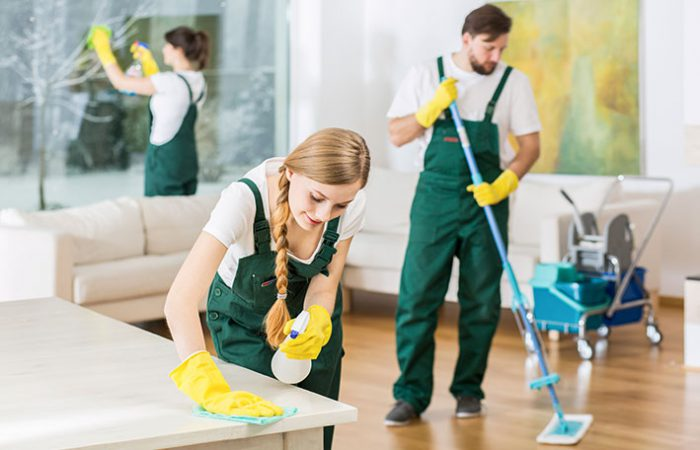 6 Tips to Make Your Cleaning Company a Success