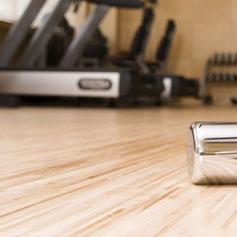 Gym Multi Floor Cleaner Alphaclean